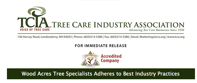 TCIA Accreditation for Wood Acres Tree Specialists