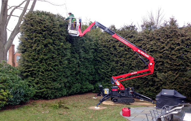 Wood Acres trimming large shrubs with lift. Tree trimming safety gear.