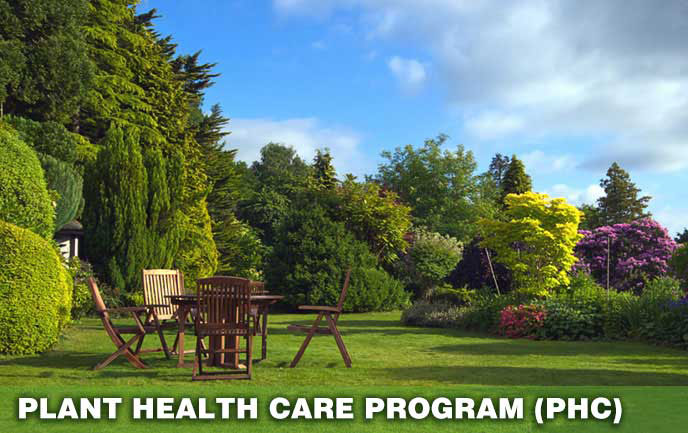 Tree and Shrub Health Care Program Maryland DC