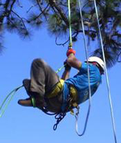 safety program for tree climbers